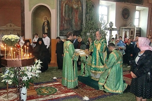 В День Святого Духа архиепископ Антоний совершил литургию в Свято-Троицком храме п. Шахово