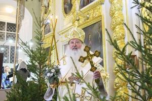 Митрополит Тихон: «Христос родился — идите Ему навстречу!»
