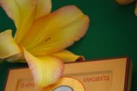 В день памяти прмц. вел. кн. Елисаветы Феодоровны и инокини Варвары митрополит Орловский и Болховский Тихон совершил Литургию в храме Воскресения Словущего монастыря блж. Ксении Петербургской с. Долбенкино Дмитровского района. 18 июля 2020 г.